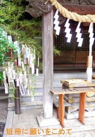 八幡神社 短冊
