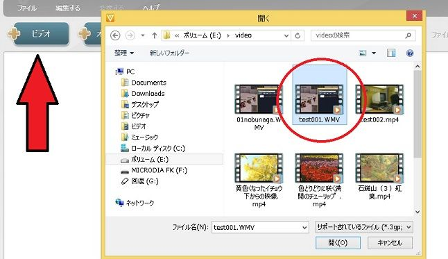 how to use freemake video downloader