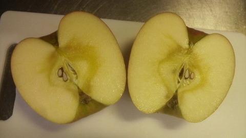 リンゴ収穫2