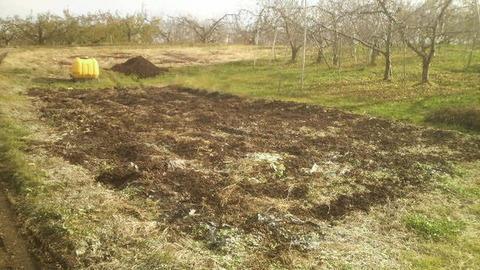 畑の土壌改良6