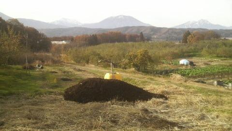 畑の土壌改良5