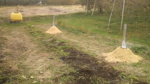 畑の土壌改良1