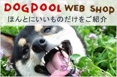 dogpoolwebshop