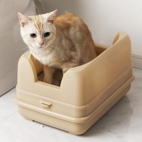 トイレ03_猫ねこch
