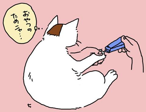 爪きり_猫ねこch