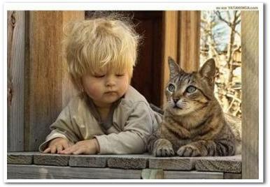 子供_懐く_猫ねこch