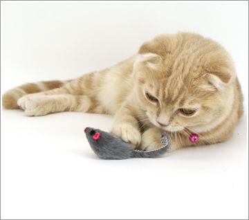 猫_おもちゃ_猫ねこch
