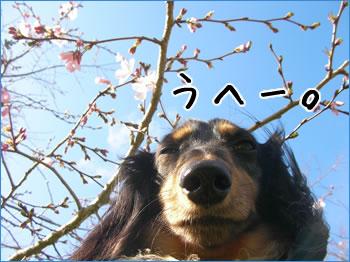 20070922_03