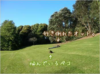 20080104_01