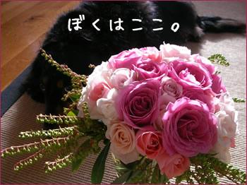 20070924_03