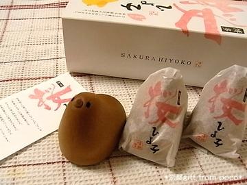 桜ひよこ2