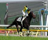 ウオッカが牝馬で日本ダービーを制覇!