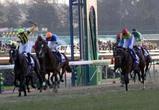 2005年有馬記念