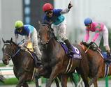 2007年宝塚記念優勝馬アドマイヤムーン