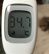 170203のお熱