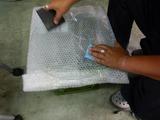 ウエットブラストガラス交換保護フィルム貼付け (2)