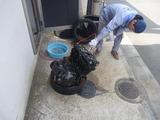 11エンジン洗浄 (1)