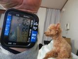 180324本日の血圧と基礎体温 (1)