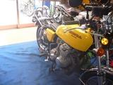 150724黄色い君ご来店 (2)