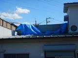 台風一過24号 (1)