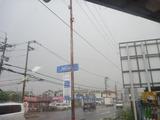 ゲリラ豪雨? (1)
