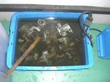 キャブ洗浄 (2)