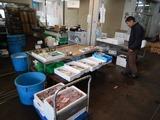 鮮魚市場 (1)