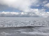 流氷の便り