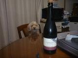 シャンパン赤退治 (1)