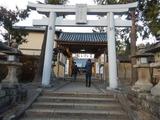 枚方十日恵比寿祭り (1)