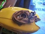 黄色い号タンク錆取り