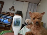 180324本日の血圧と基礎体温 (2)