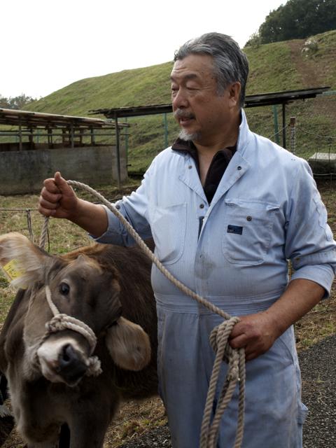 磯沼さんと牛