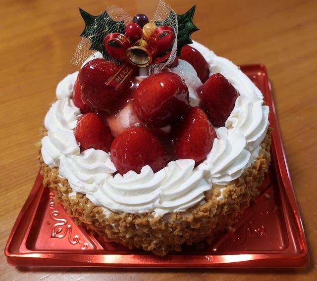 christmascake-2020-sinjyuku-takano-2