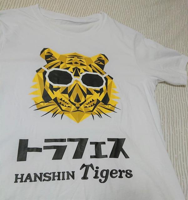 hanshin-tigers-koshien-210701-6a
