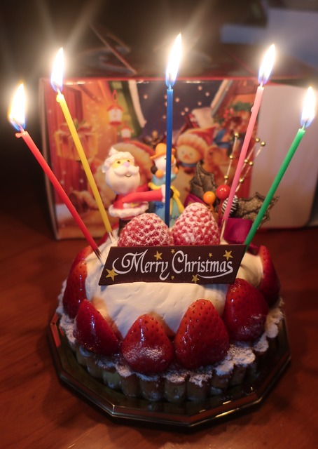 christmascake-2019-miammiam-03g
