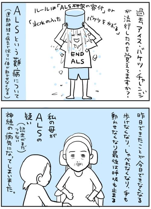 als-1