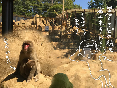 IMG_8814 猿