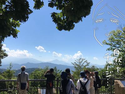 IMG_8814 山頂
