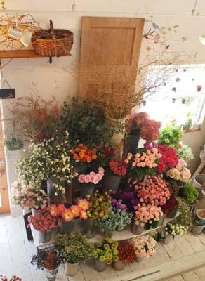 切り花たち
