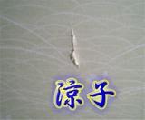 傷( ┰_┰) シクシク