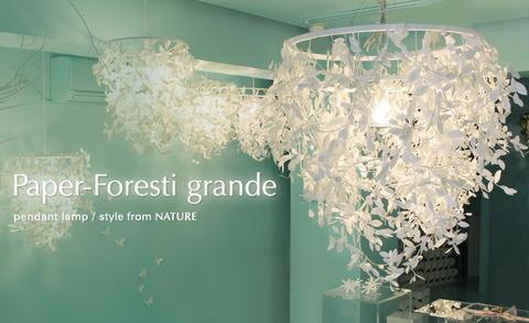 DI_CLASSE_Paper-Foresti-grande_I01