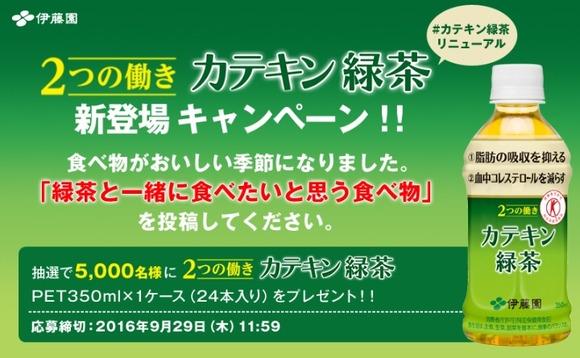 懸賞 伊藤園カテキン緑茶 24本 5000人にプレゼント