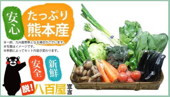 すぐたま 熊本産野菜13種類以上 半額(2900円→1500円)購入♪