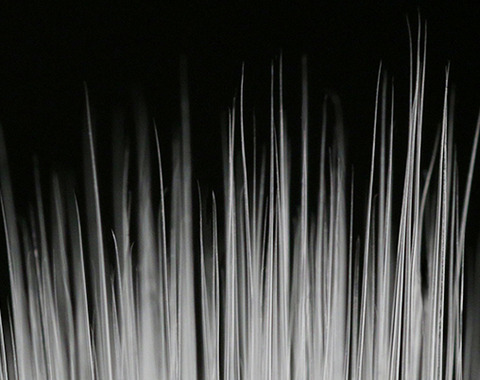 2014120807