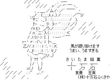 『ドキドキ!プリキュア』第25話