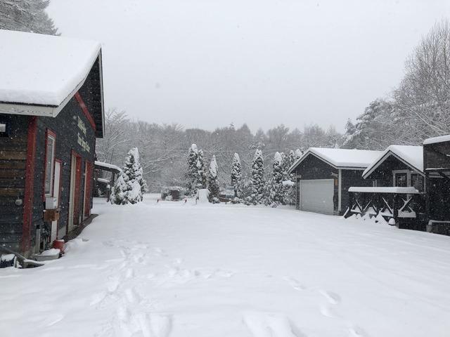 えー!大雪っ