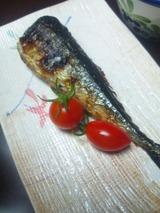 秋刀魚塩焼き