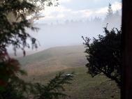 霧のゴルフコース
