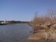 拝島付近の多摩川2